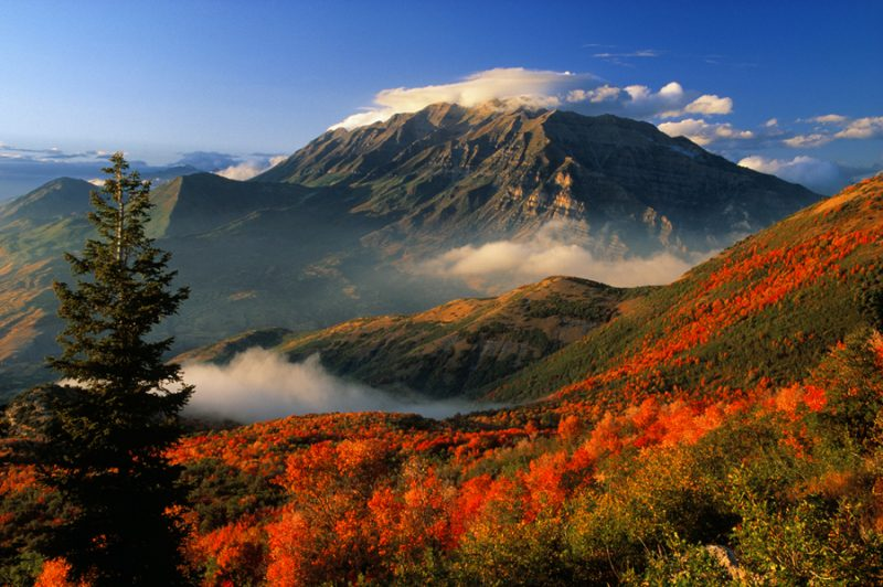 Autumn in the moutains